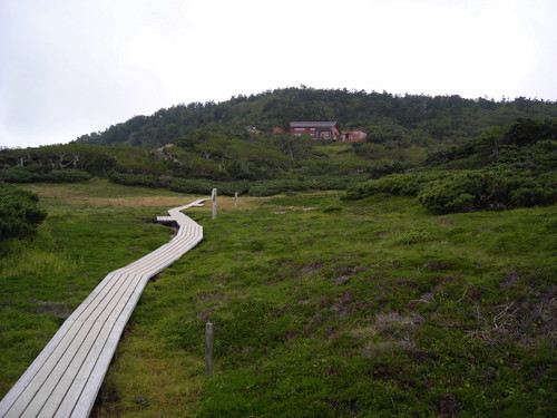 2006090421